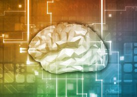 Cerebral cortex vs. Cortex XDR: how good data is reinventing security operations